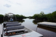 Everglades i Florida, svävare. båt