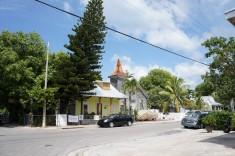 En gata i Key West Florida